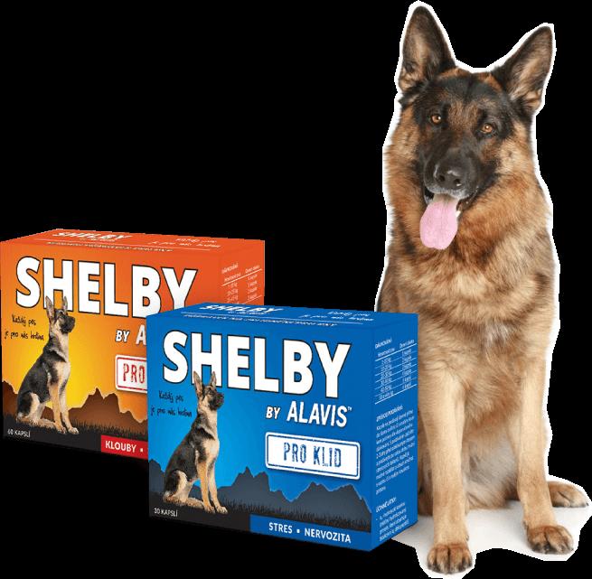 Shelby produkty
