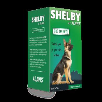 shelby---imunita.png